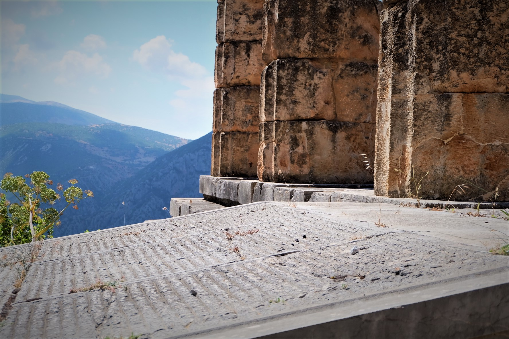 Carry It Like Harry - My Journey to Delphi, the Navel of the World