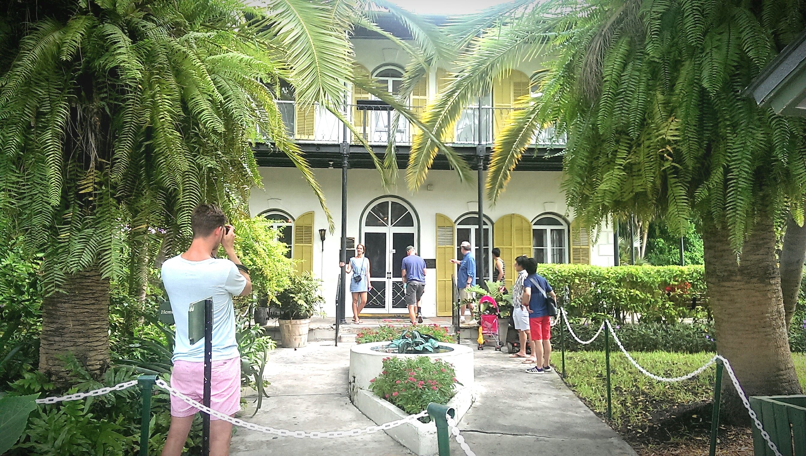 Carry It Like Harry - The Peculiarities of Key West