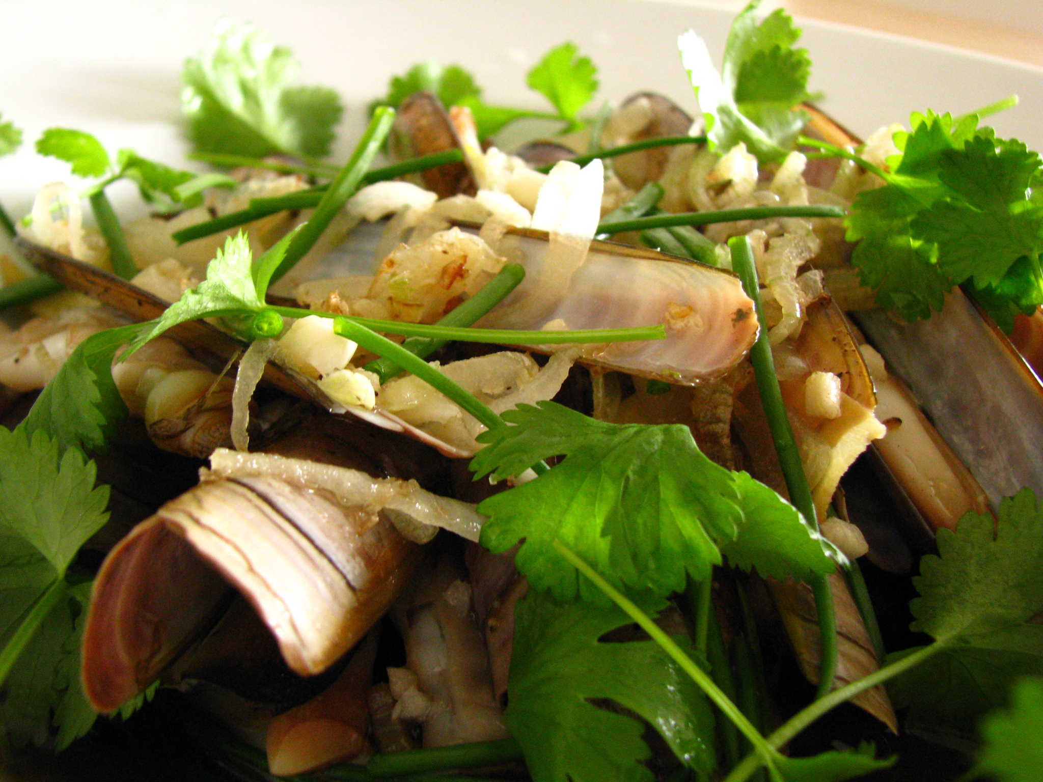 Steamed razor clams with sizzling garlic 香蒜蒸竹蛏