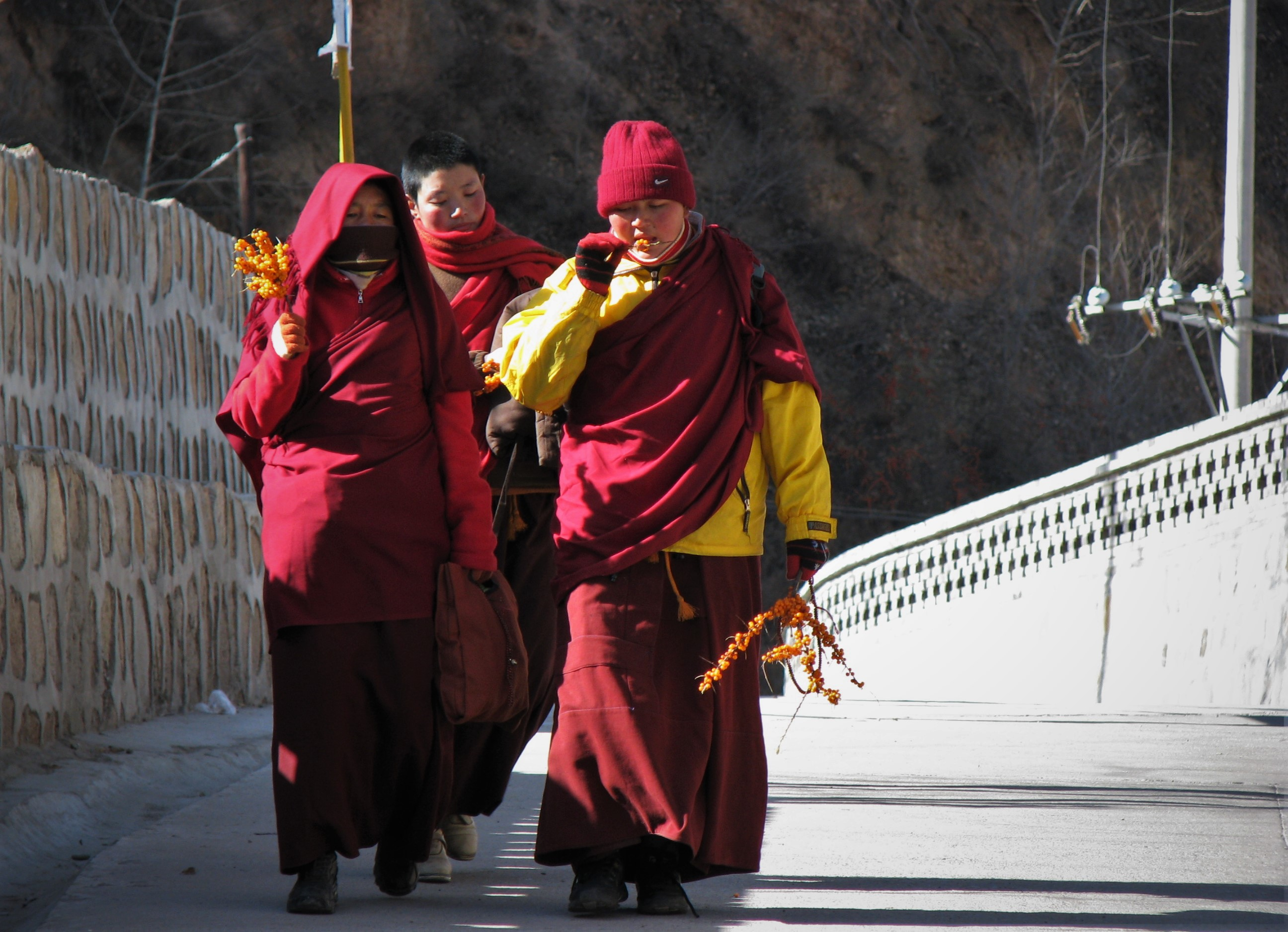 Carry It Like Harry - Mount Wutai in Shanxi, China