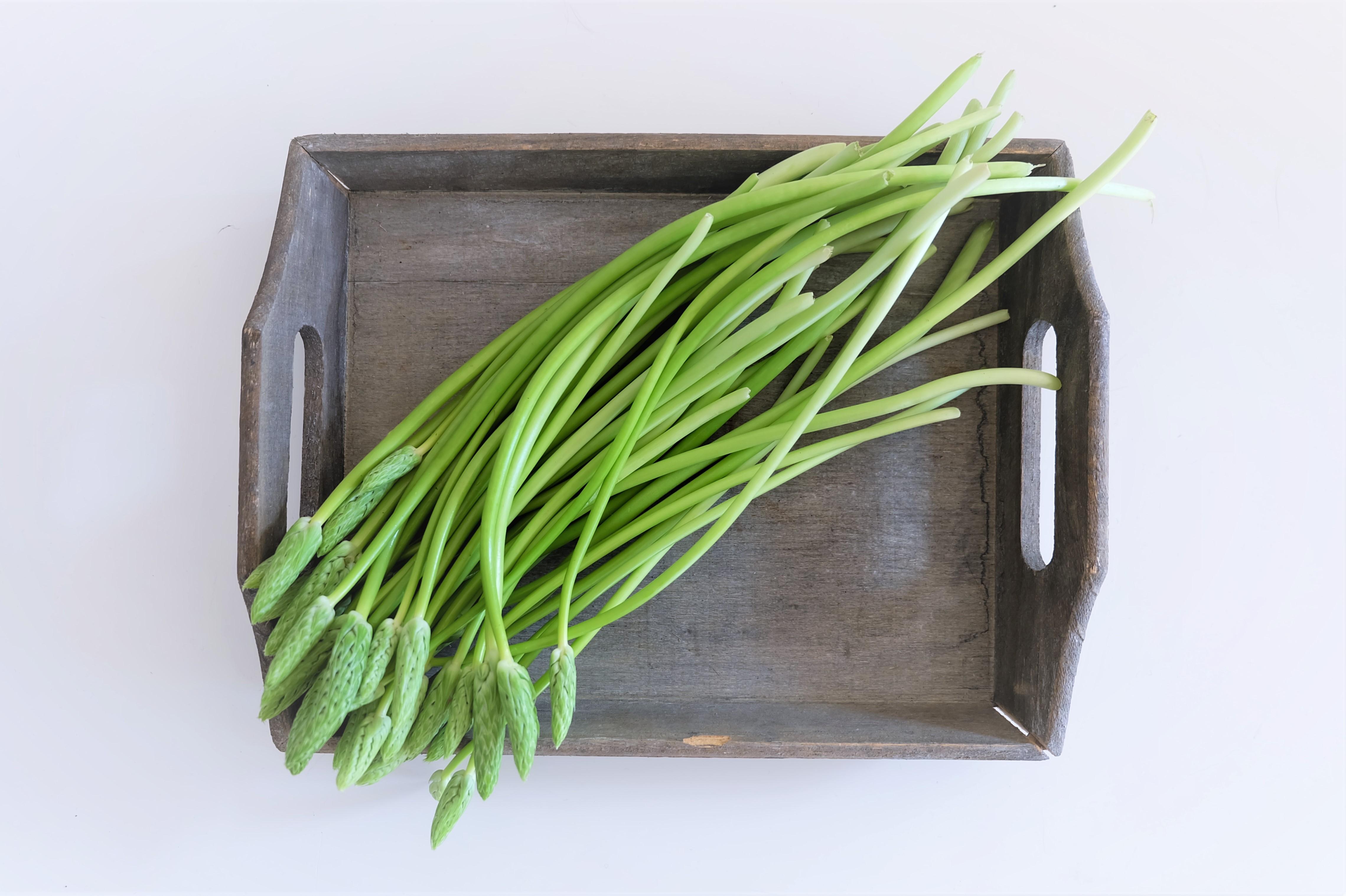What is Bath Asparagus?